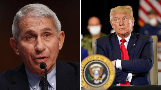 Dr anthony Fauci and Donald Trump