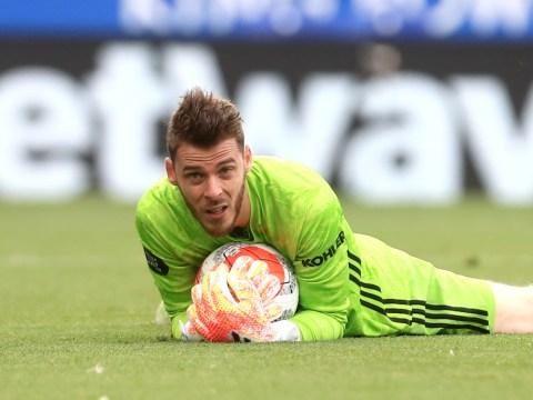 Man Utd scouts identify goalkeeper to challenge David de Gea