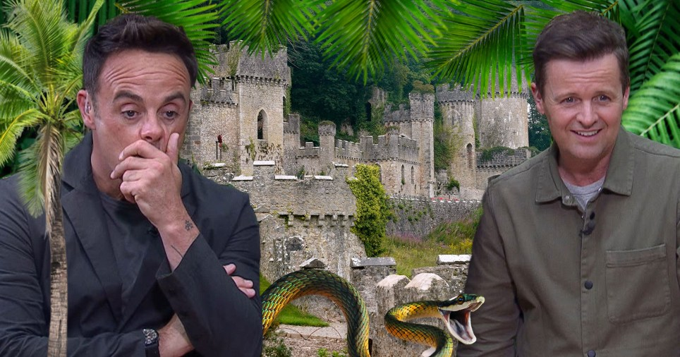 a comp of ant and dec with Gwrych Castle in the background