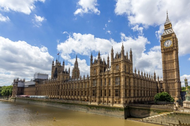 The alleged rape victim of a senior Tory MP said it is 'insulting' that he was not suspended from the Conservative Party.