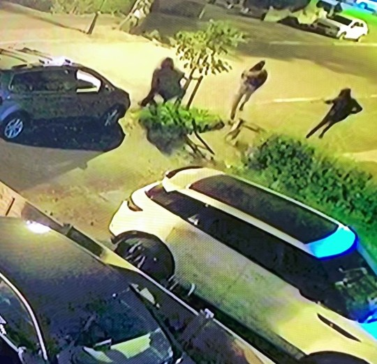 PIC FROM Kennedy News and Media (PICTURED: THE GANG WERE CHASED DOWN THE ROAD BY MACEY, INSET.) Terrifying CCTV captures the moment a 'hero' family dog chased off a group of four machete-wielding home invaders - despite being slashed at with the massive blade. When dad-of-four Paul Davis??? house in Birmingham was attacked on July 30 by hooded thugs, his devoted Staffie Macey didn't think twice about 'laying her life on the line' for her family. As one of the men kicked in the front door, a second came charging in an attempt to storm inside while pulling a giant knife out of his tracksuit. DISCLAIMER: While Kennedy News and Media uses its best endeavours to establish the copyright and authenticity of all pictures supplied, it accepts no liability for any damage, loss or legal action caused by the use of images supplied and the publication of images is solely at your discretion. SEE KENNEDY NEWS COPY - 0161 697 4266