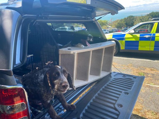 Isle of Wight police were called to rescue two dogs that were trapped in a car in the sweltering heat in Blackgang Chine.