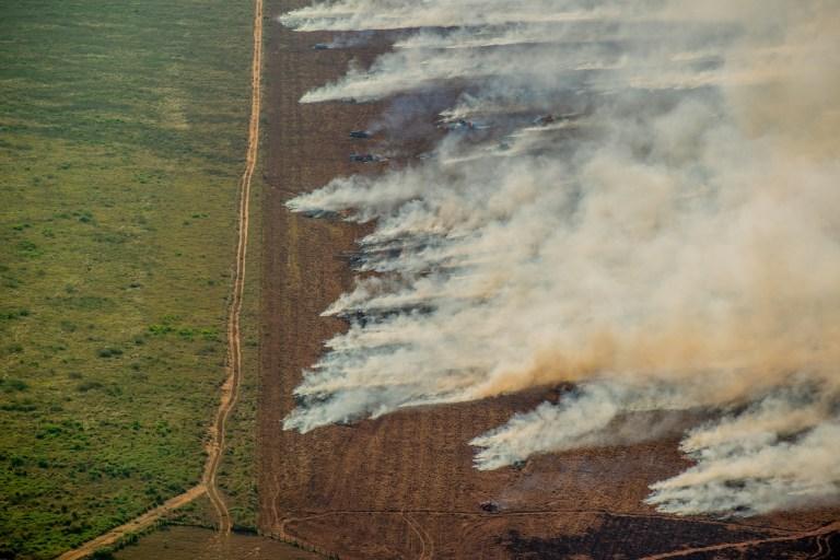 Hotspot à côté d'une zone déboisée enregistrée par Prodes (Projet brésilien de surveillance par satellite de l'Amazonie), à Nova Maringa, État du Mato Grosso.