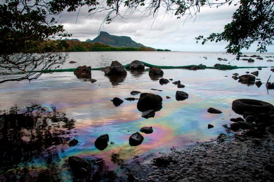 A picture taken on August 15, 2020 shows iridescence on the water at the beach in Petit Bel Air, due to the oil leaked from vessel MV Wakashio, belonging to a Japanese company but Panamanian-flagged, that ran aground near Blue Bay Marine Park off the coast of south-east Mauritius. - A fresh streak of oil spilled on August 14, 2020, from a ship stranded on a reef in pristine waters off Mauritius, threatening further ecological devastation as demands mount for answers as to why the vessel had come so close to shore. (Photo by Fabien Dubessay / AFP) (Photo by FABIEN DUBESSAY/AFP via Getty Images)