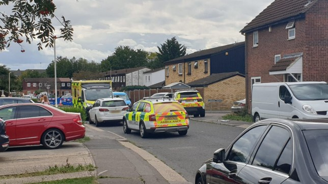 A child has been stabbed in Pitsea, police have confirmed.