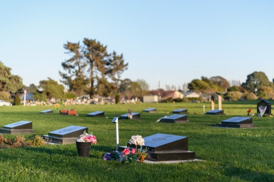 CHRISTCHURCH, NOUVELLE-ZÉLANDE - 26 AOÛT: Vue générale du cimetière Memorial Park où la plupart des victimes d'attaques de mosquées sont enterrées avant l'audience de détermination de la peine de Brenton Harrison Tarrant le 26 août 2020 à Christchurch, Nouvelle-Zélande.  Brenton Harrison Tarrant a été reconnu coupable de 92 chefs d'accusation relatifs à la pire fusillade de masse de l'histoire de la Nouvelle-Zélande.  L'Australien a été inculpé de 51 chefs d'accusation de meurtre et de 40 de tentative de meurtre ainsi que de participation à un acte de terrorisme après avoir ouvert le feu à la mosquée Al Noor et au centre islamique de Linwood à Christchurch le vendredi 15 mars 2019. 50 personnes ont été tuées et des dizaines ont été blessés tandis qu'un autre homme est décédé plus tard à l'hôpital.  (Photo par Kai Schwoerer / Getty Images)