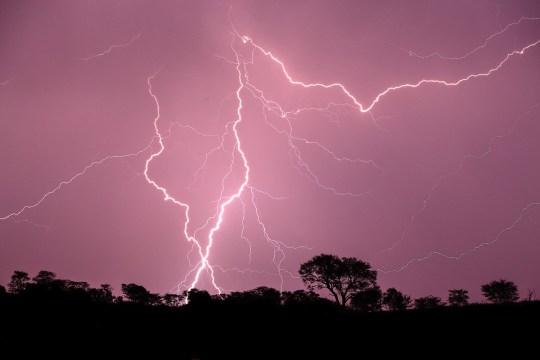 Un énorme orage avec des éclairs et un ciel violet au-dessus des arbres à l'horizon