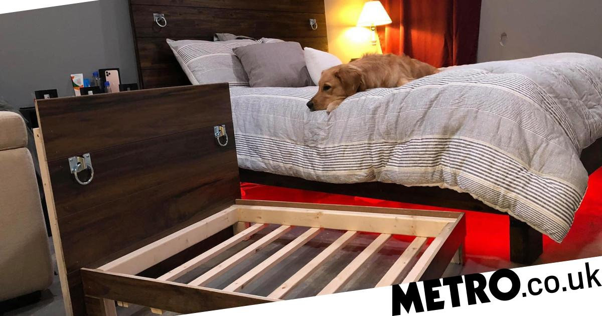 Woman shares how she built adorable mini replica of her bed for dog