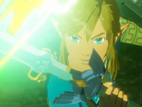 New Zelda game out this year, but it's a Hyrule Warriors prequel to Breath Of The Wild