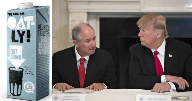Blackstone's CEO is a major donor to Donald Trump's reelection campaign