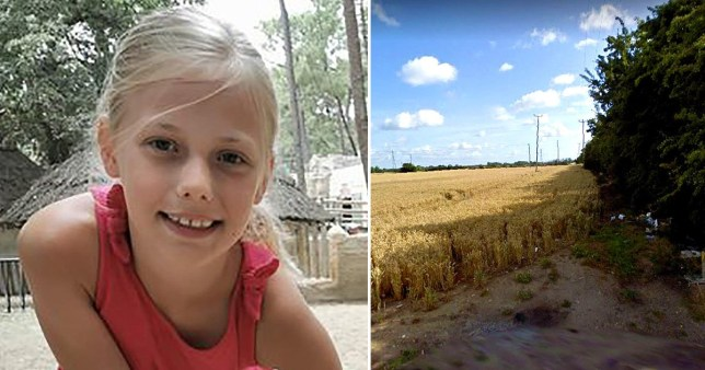 Girl, 8, died from head injuries after tree fell on her in 60mph winds