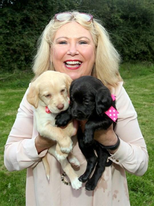 Mary avec deux des chiens