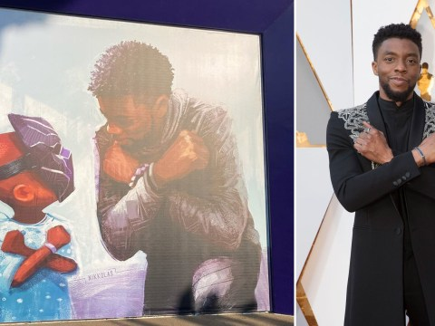 Stunning Chadwick Boseman mural unveiled after Black Panther legend laid to rest