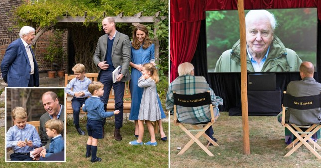 David Attenborough met with Prince William, Kate, George, Charlotte and Louis at a screening of his new film A Life On Our Planet