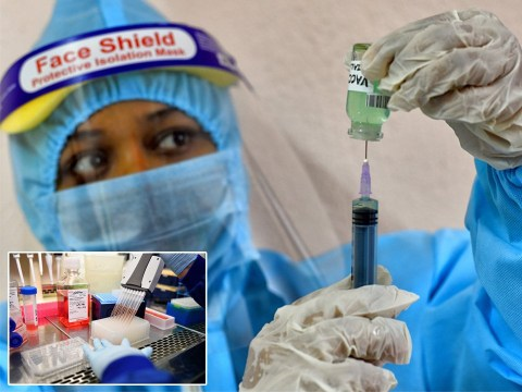 Mass vaccine rollout 'could be delayed for two years' due to supply chain issues