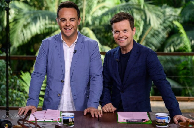 Ant and Dec in the I'm A Celebrity jungle