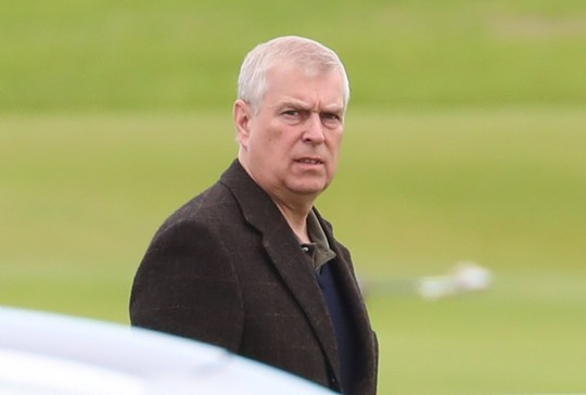 Photograph of Prince Andrew