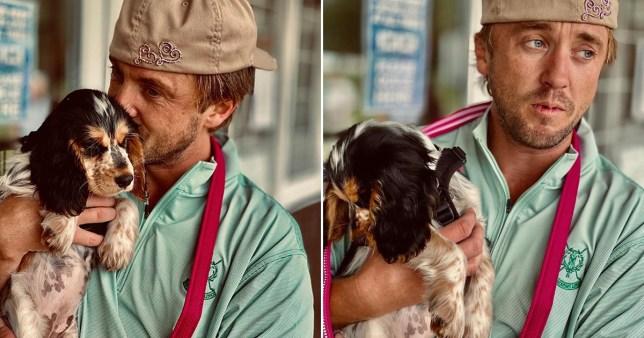 Tom Felton cuddling a puppy