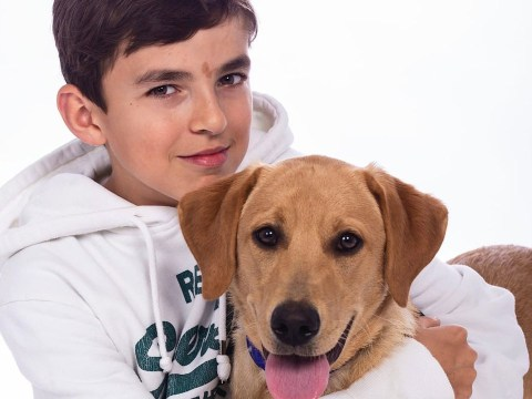 Therapy dog helped terrified autistic boy, 12, leave the house during coronavirus