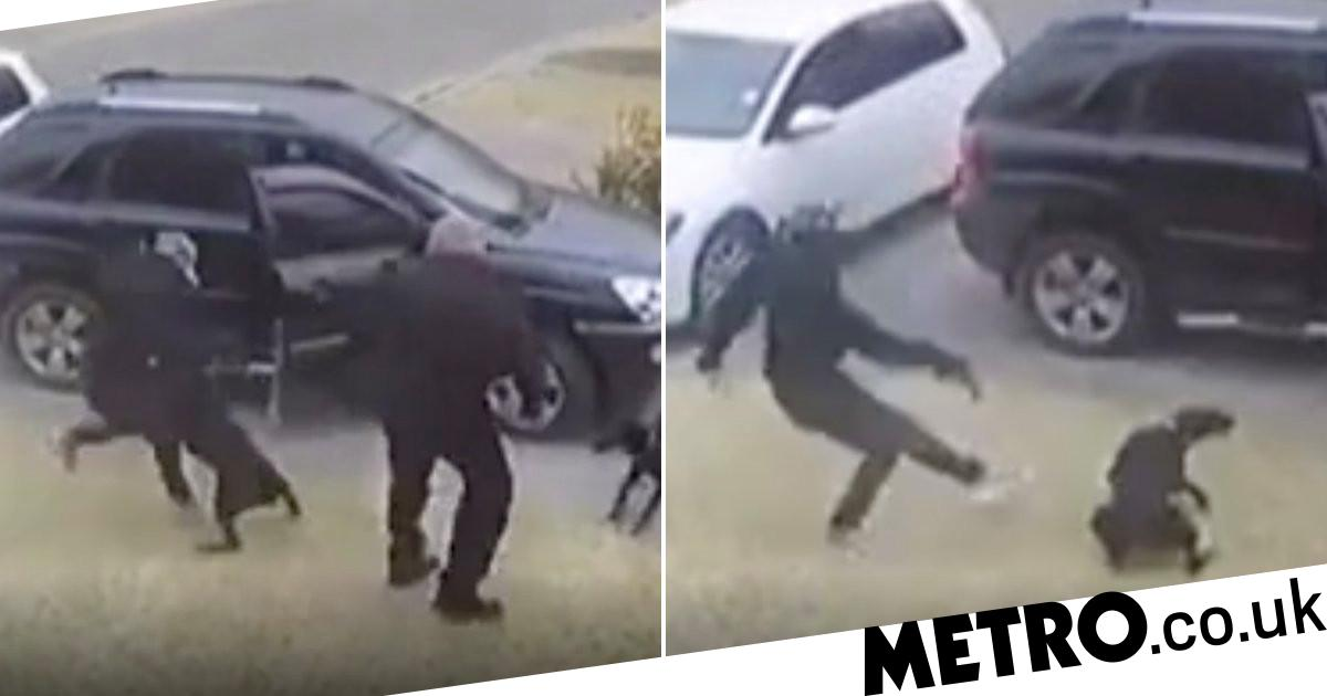 Moment dog takes bullet to save owner's life during armed robbery