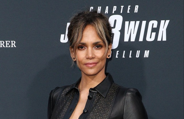 Halle Berry on the red carpet at John Wick premiere.