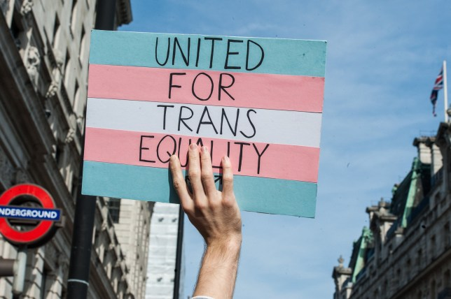 Photograph of trans rights flag