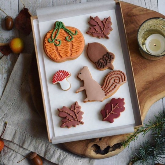 Cosy Autumn Biscuit Gift Set by Honeywell Biscuit Co, £25, Not On The High Street. Buy it with the Ownable app.