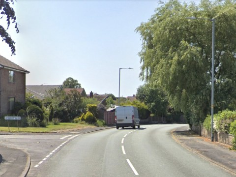 Hunt for man who 'tried to lure two young girls into his van'