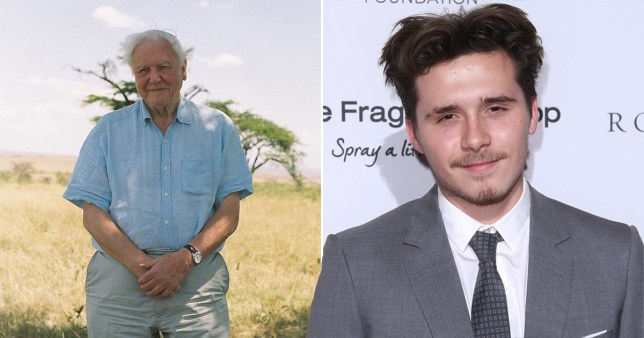 Brooklyn Beckham photographed David Attenborough for his new doc