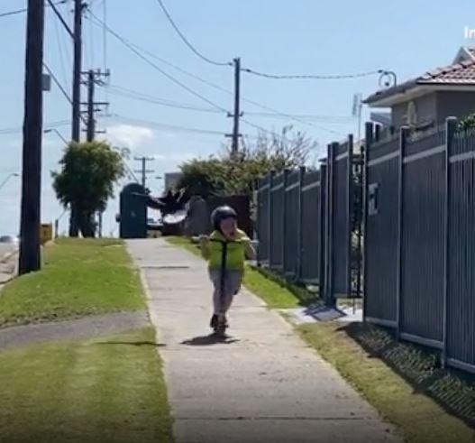 Un petit garçon sur un scooter hurle alors qu'il est attaqué par une pie - demandé pour un usage social