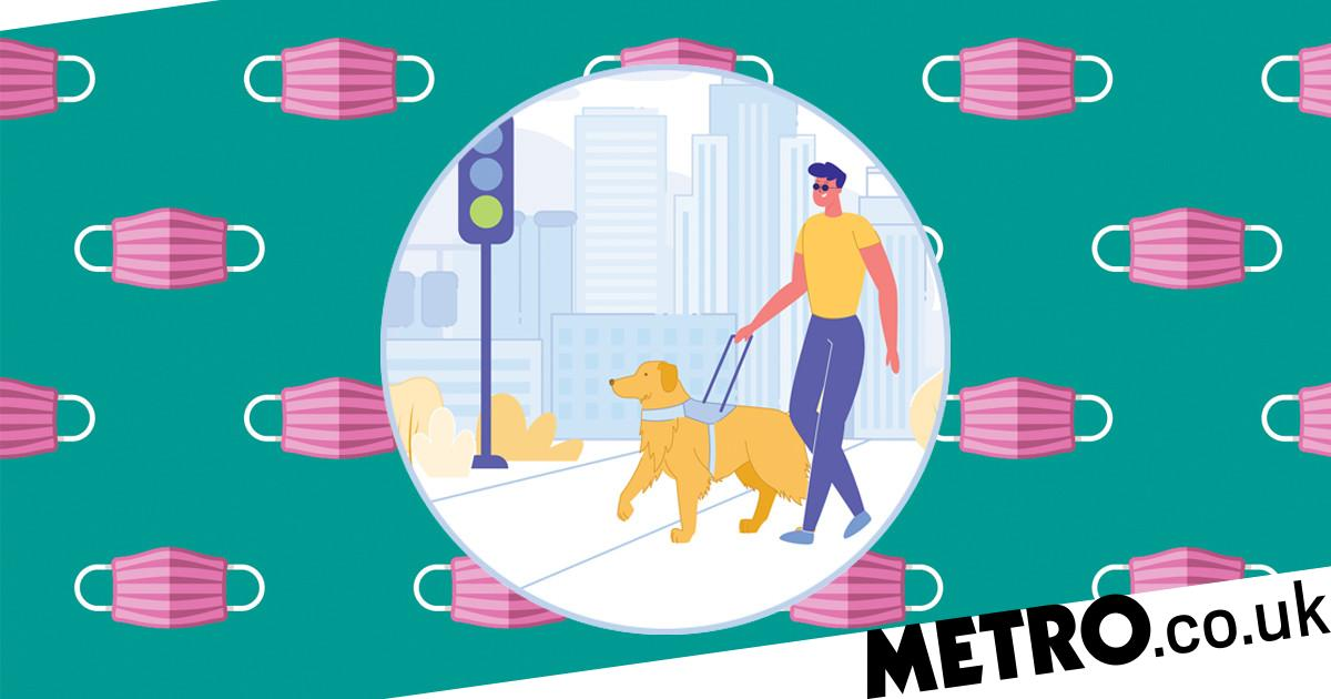 Guide dog users are being denied access in pubs and bars post-lockdown