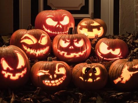 Law school shares weirdest Halloween laws from around the world