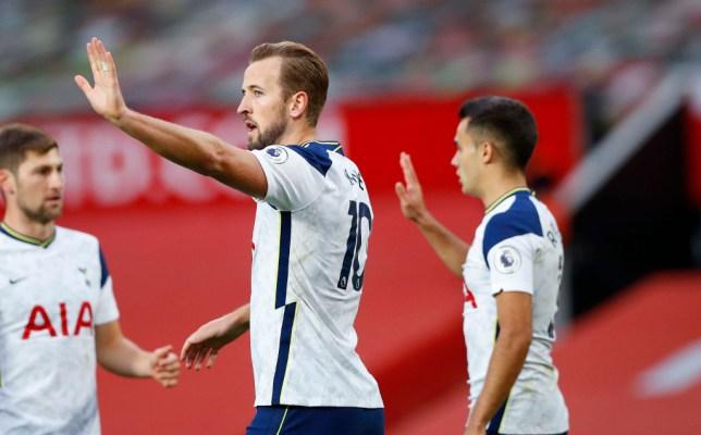 Harry Kane celebrates scoring for Tottenham against Manchester United in the Premier League