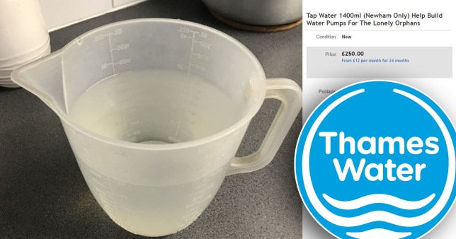 Jug of water on eBay