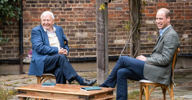 The Duke of Cambridge and Sir David Attenborough have teamed up to launch the Earshot Prize calling for fresh ideas to help save the planet by 2030.