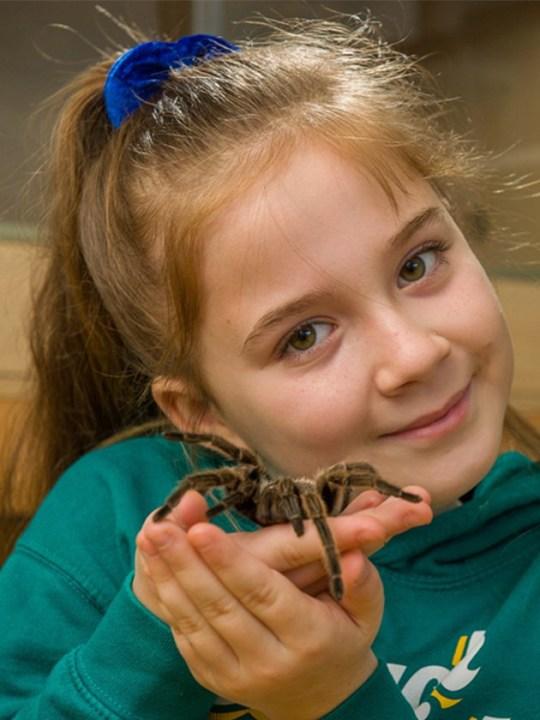 Hollie holding a tarantula