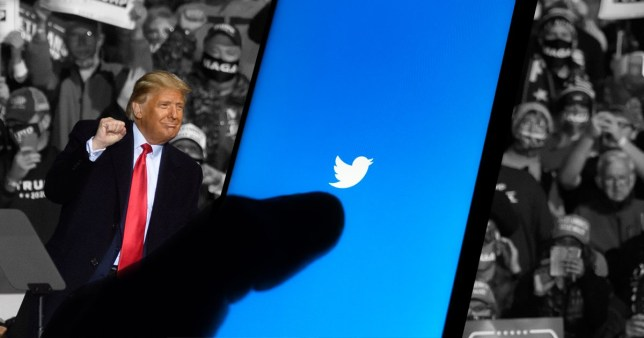 Composition showing Trump in front of a Twitter logo and crowds at his rally