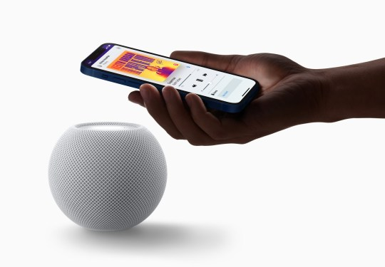 An iPhone and the new HomePod mini speaker