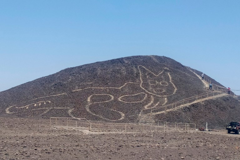 A new etching of what appears to be a cat found among the Nazca Lines in Peru.