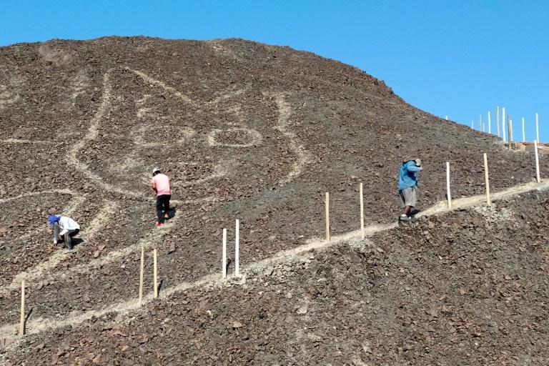 Une nouvelle gravure de ce qui semble être un chat trouvé parmi les lignes de Nazca au Pérou.