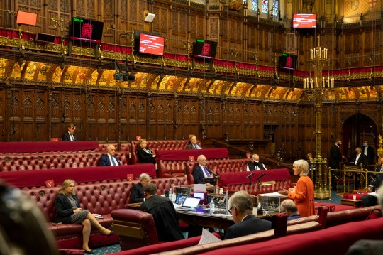 OFFICIAL PHOTOS: Lords debate the UK Internal Market Bill