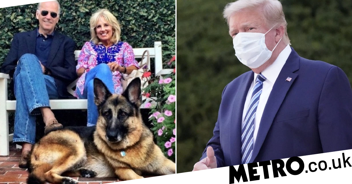 Biden video says you can't trust Trump because he doesn't have a dog
