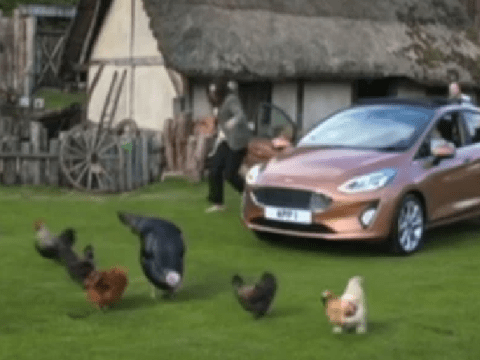 The Apprentice Best Bits leaves fans in stitches as Elizabeth McKenna chases chickens in iconic moment