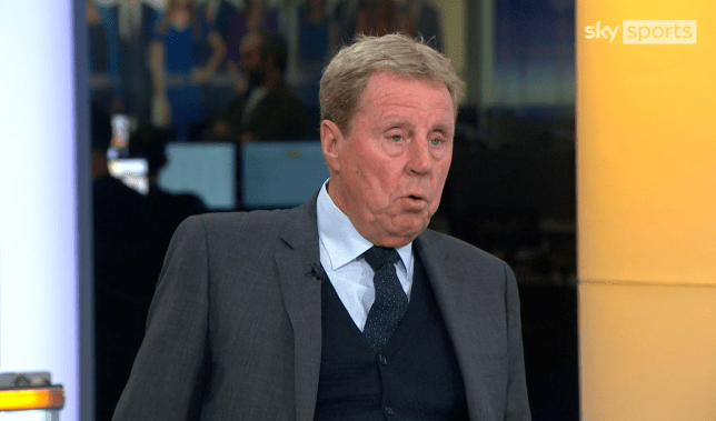 Harry Redknapp is 'surprised' the Premier League clubs did not target John Stones