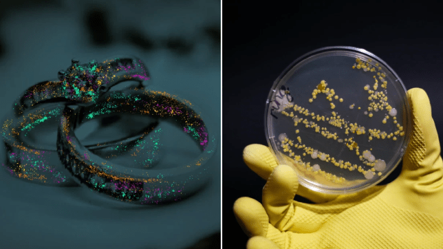 ring covered in germs