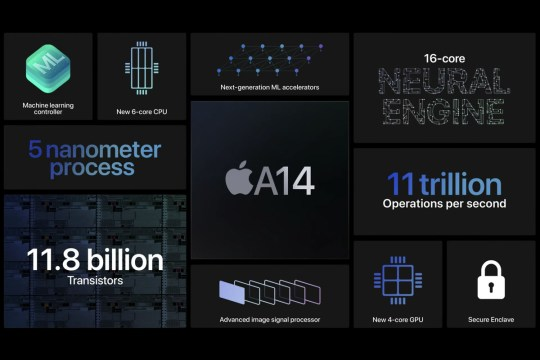 Apple's A14 Bionic processor is in all the variants of the iPhone 12 (Apple)