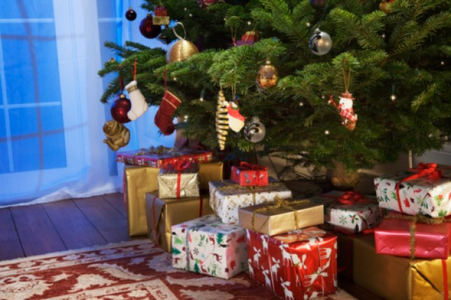 Presents under the christmas tree.