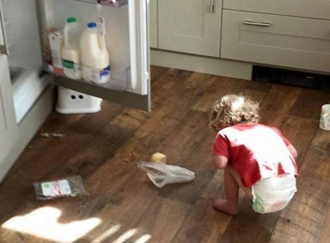 baby gideon, who has Prader-Willi syndrome, raiding the fridge