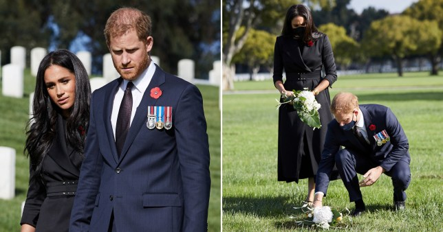 harry and meghan s remembrance day tribute was not a publicity stunt metro news harry and meghan s remembrance day