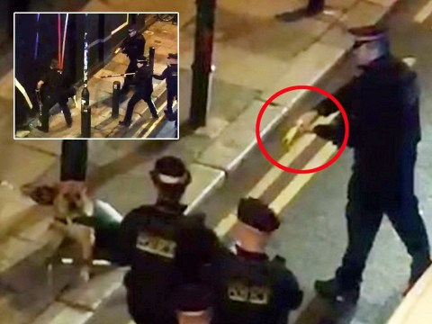 Small dog surrounded by six police officers and tasered but it still escapes